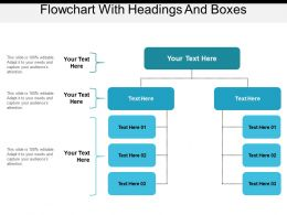 Flowchart With Headings And Boxes