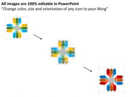58294750 Style Linear 1-Many 12 Piece Powerpoint Presentation Diagram Infographic Slide