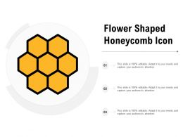 Flower Shaped Honeycomb Icon