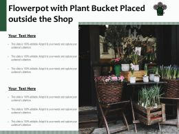 Flowerpot With Plant Bucket Placed Outside The Shop