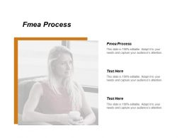 Fmea Process Ppt Powerpoint Presentation Gallery Graphics Tutorials Cpb