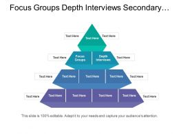 Focus Groups Depth Interviews Secondary Research Company Product Launch