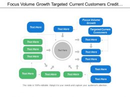 Focus Volume Growth Targeted Current Customers Credit Collector