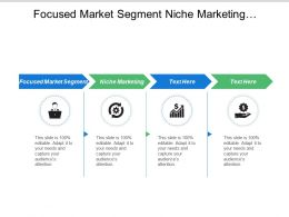Focused Market Segment Niche Marketing Demographic Structure Natural Environment