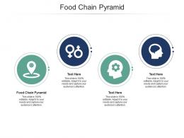 Food Chain Pyramid Ppt Powerpoint Presentation Example File Cpb