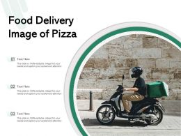 Food Delivery Image Of Pizza
