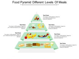 Food Pyramid Different Levels Of Meals