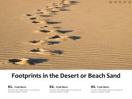 Footprints In The Desert Or Beach Sand