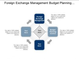 Foreign Exchange Management Budget Planning Control Product Development Cpb
