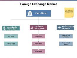 Foreign Exchange Market Spot Market Ppt Powerpoint Presentation File Format
