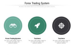Forex Trading System Ppt Powerpoint Presentation Diagram Ppt Cpb