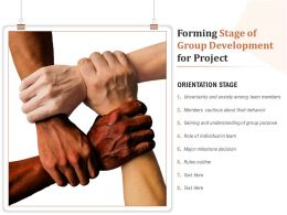 Forming Stage Of Group Development For Project