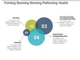 Forming Storming Norming Performing Hoshin Kanri Strategy Execution Cpb
