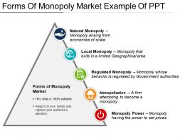 Forms Of Monopoly Market Example Of Ppt