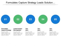 Formulates Capture Strategy Leads Solution Development Identify Opportunities
