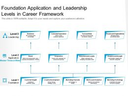 Foundation Application And Leadership Levels In Career Framework