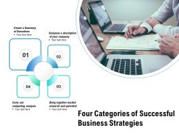 Four Categories Of Successful Business Strategies
