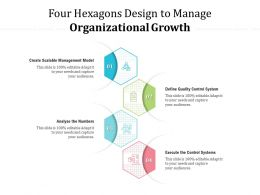 Four Hexagons Design To Manage Organizational Growth