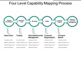 Four Level Capability Mapping Process