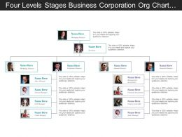 Four Levels Business Corporation Org Chart With Profile