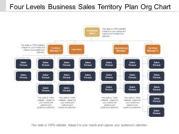 Four Levels Business Sales Territory Plan Org Chart