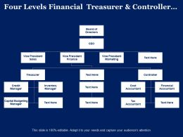 Four Levels Financial Treasurer And Controller Org Chart