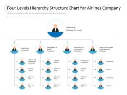 Four Levels Hierarchy Structure Chart For Airlines Company Infographic Template