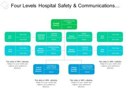 Four Levels Hospital Safety And Communications Org Chart