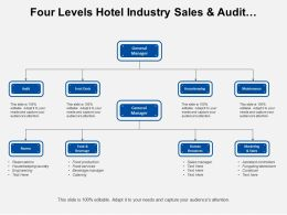 Four Levels Hotel Industry Sales And Audit Functions Org Chart
