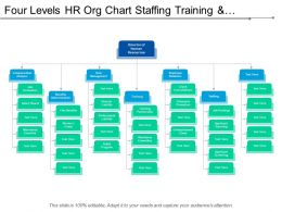Four Levels Hr Org Chart Staffing Training And Compensation Analysis
