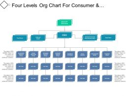 Four Levels Org Chart For Consumer And Wholesale Banks