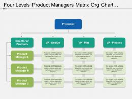 Four Levels Product Managers Matrix Org Chart Template
