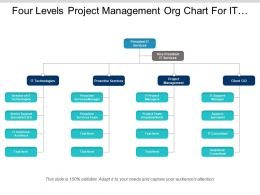 Four Levels Project Management Org Chart For It Company
