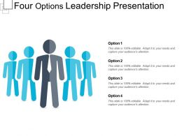 Four Options Leadership Presentation