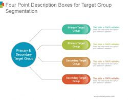 Four Point Description Boxes For Target Group Segmentation Ppt Background Graphics