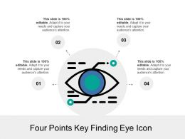 Four Points Key Finding Eye Icon