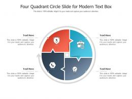 Four Quadrant Circle Slide For Modern Text Box Infographic Template