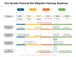 Four Quarter Financial Risk Mitigation Planning Roadmap