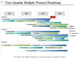 Four Quarter Multiple Product Roadmap