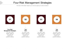 Four Risk Management Strategies Ppt Powerpoint Presentation Ideas Slides Cpb