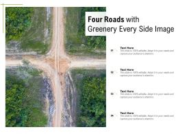 Four Roads With Greenery Every Side Image