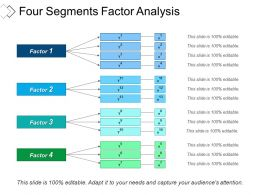 Four Segments Factor Analysis