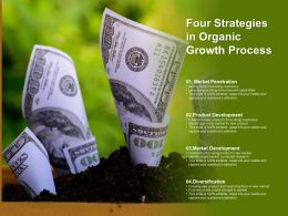 Four Strategies In Organic Growth Process