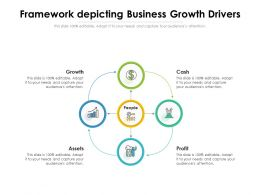 Framework Depicting Business Growth Drivers
