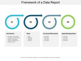 Framework Of A Data Report