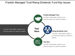 Franklin Managed Trust Rising Dividends Fund Key Issues