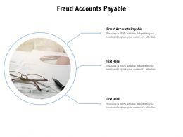 Fraud Accounts Payable Ppt Powerpoint Presentation Portfolio Format Ideas Cpb