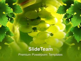Fruitful Grapes Health PowerPoint Templates PPT Themes And Graphics 0213