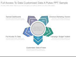 Full Access To Data Customized Data A Pukes Ppt Sample
