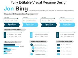 Fully Editable Visual Resume Design